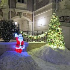 Елка и Дед Мороз, поселок Трувиль