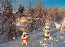 Скульптуры овечек у замершего озера, КП Трувиль