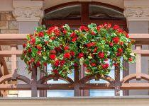 Балкончик с цветами, таунхаус в поселке Трувиль